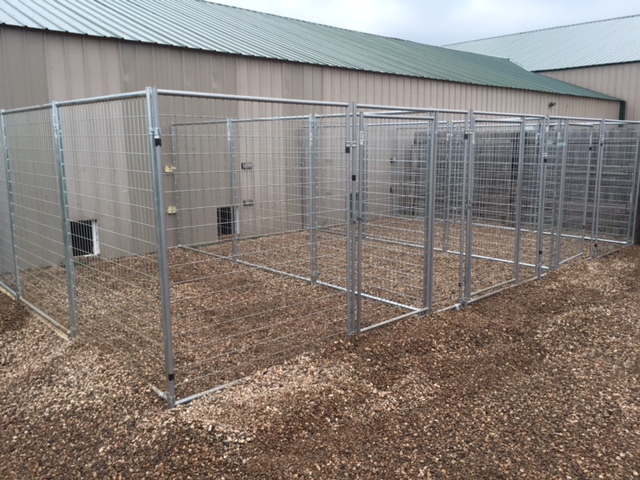Our Highly Maintained Kennel